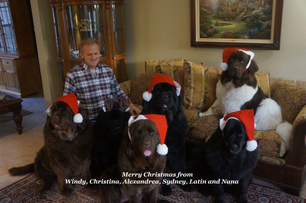 Christmas1 2015